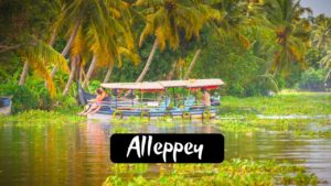 11 Best Captivating Tourist Places To Visit in Alleppey