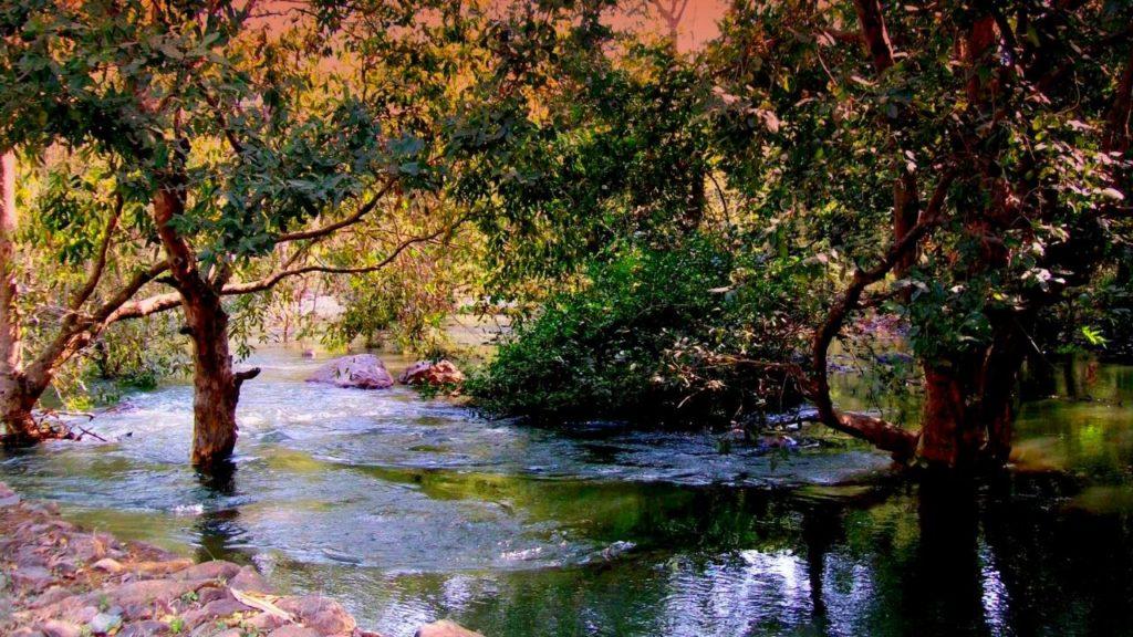 Sita-Mata Wildlife Sanctuary