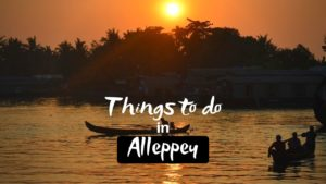 11 Best Things To Do in Alleppey for Refreshing Holiday