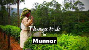 11 Mesmerizing Things to do in Munnar for Memorable Vacation
