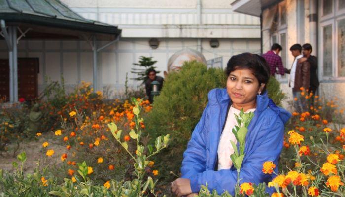 Holiday at Shimla Hill
